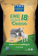 Ewe with Lamb 18 Coarse