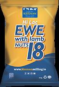 Hi Lac Ewe with lamb 18